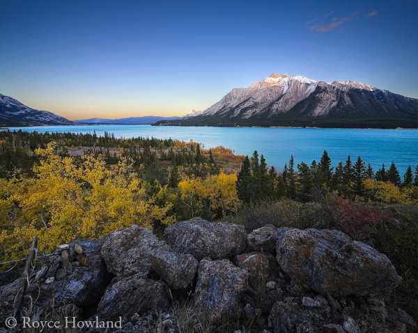 Fall at Abraham Lake 2
