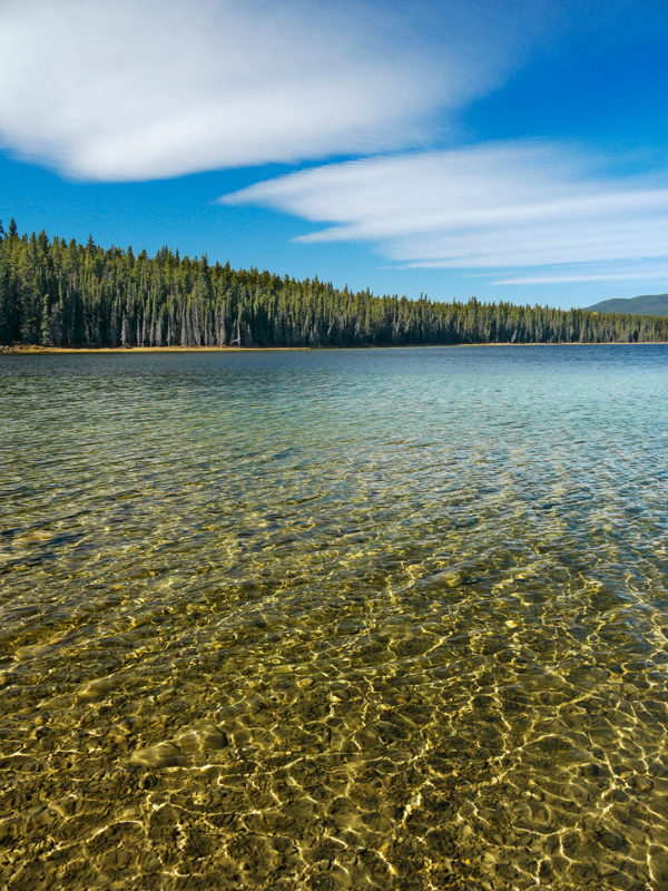 Goldeye Lake | Copyright © 2010 Alan Ernst