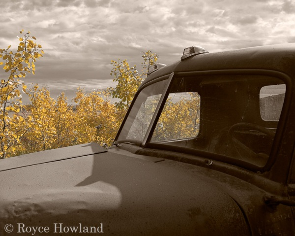 Golden & Rusted, Highway 11