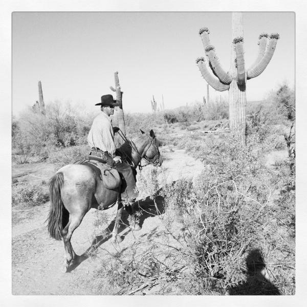 Cowboy Copyright © 2012 Royce Howland