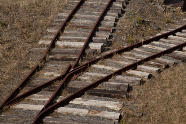 Tracks Copyright © 2012 Mo Mullet