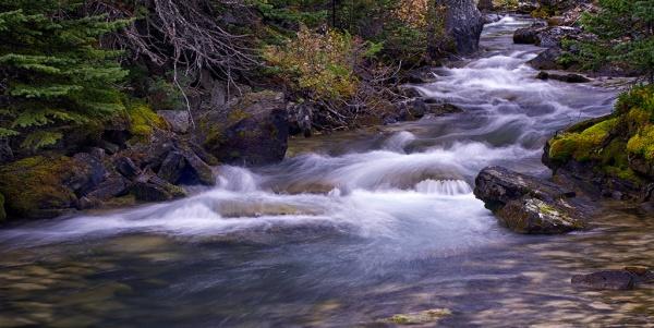 Lake Ohara Cascades. Copyright © 2013 Dudley Watson.